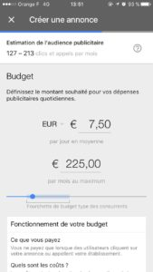Choix du budget -adwords express