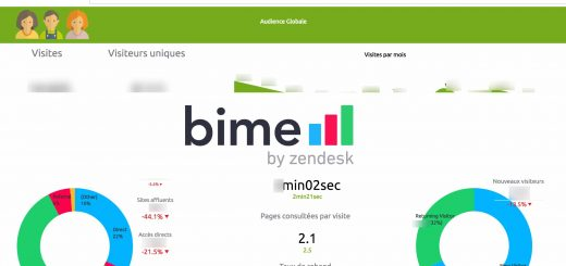 Bime-analytics_Article